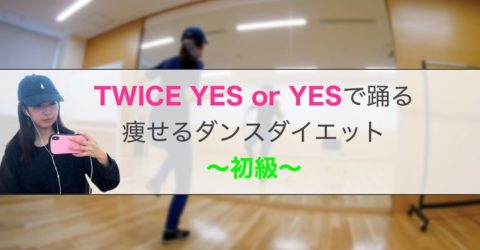 【TWICE_YES or YES(easy)】痩せるダンスダイエット(Dance Exercise)